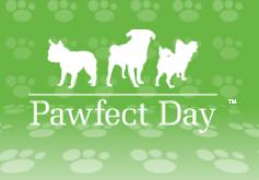 Premier Pet Care.